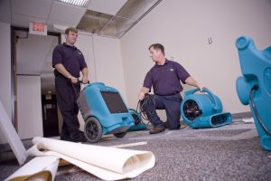 two technicians with air movers and dehumidifiers